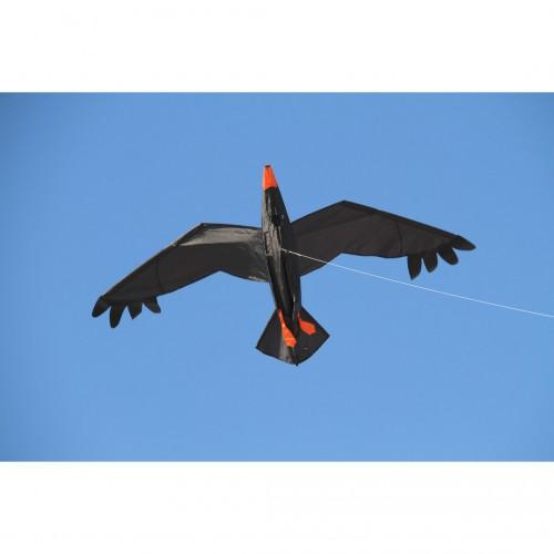 """Kite """"Raven"""""""