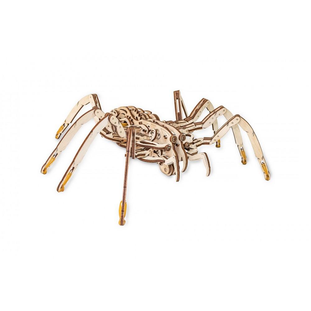 EWA SPIDER