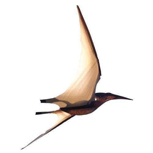 Jurassic Kites Kites Single Line Kites Pterodactyl