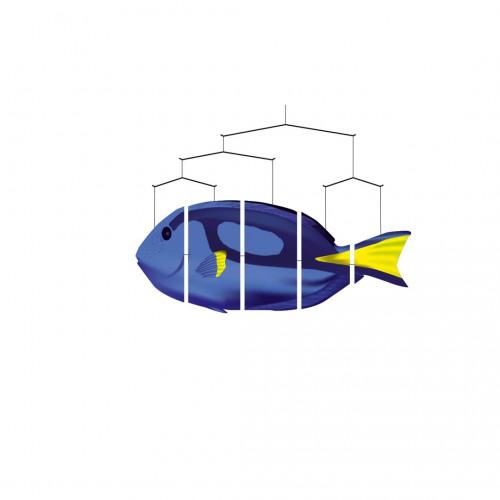 Ocean mobiles Blue Tang (vėliavinis chirurgas)