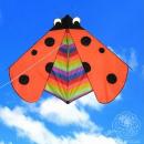 Single line kite